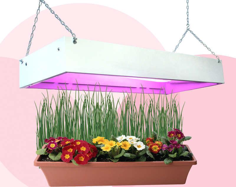 Фитосветильник для растений своими руками